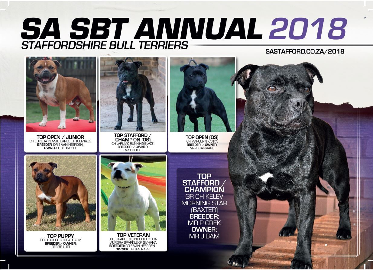 SBT ANNUAL 2018